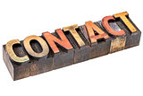 contact word in vintage wood type