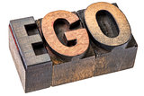 ego word in letterpress wood type