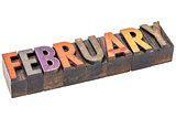 February month in wood type