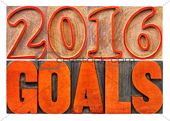 2016 goals banner in wood type