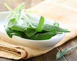 Fresh organic green fragrant sage on a wooden table
