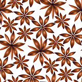 Vector seamless cardamom pattern