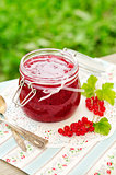 Red Currant Jam, copy space for your text