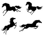 Four horses silhouettes