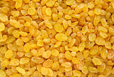 Golden raisins background