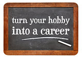 Turn your hobby into a career