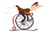 Man rides a comic bike
