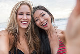 Young Women Girls Taking Selfie Photograph on Beach