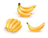 Set of isolated banana fruits