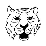 hand draw head  tiger in black and white style