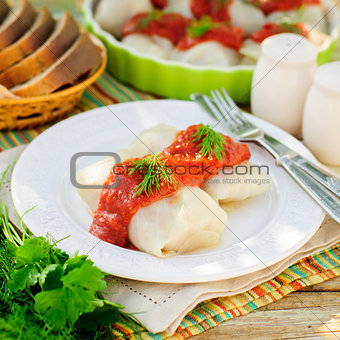 Cabbage Rolls with Tomato Sauce and Dill