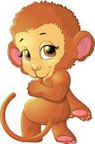 monkey sitting on a white background