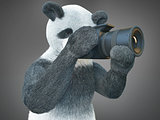 panda animail character photographer camera takes picture isolated background 3d cg render digital illustration