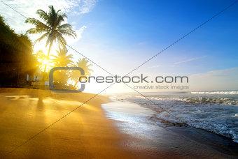 Beach near the ocean