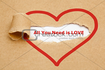 All You Need is Love Torn Paper