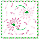 Floral background,decorative spring flowers