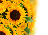 sunflowers and marigold flowers bouquet