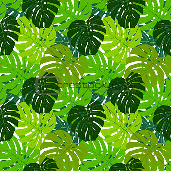 Palm Leaf Seamless Pattern Background Vector Illustration