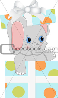 Baby elephant in Birthday gift box