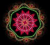 Abstract fractal fantasy magenta pattern and shapes.