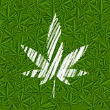 White grunge cannabis leaf on green pattern
