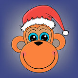 monkey head in a Christmas hat