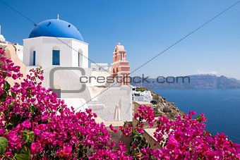 Scenic view of traditional cycladic houses with flowers in foreg