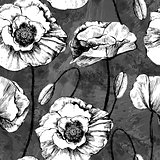 Seamless pattern of black and white poppies. Vector illustration in retro style, EPS10.