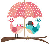 Cute birds couple under umbrella