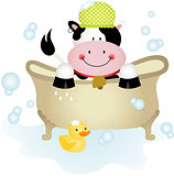 Cute cow taking a bath