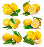 Set fresh lemon with green leaf mint