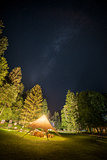 Camping Shelter at Starry Night Surrounded by Trees
