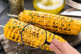 Magnifying glass examining grilled corn cob