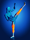 3D blue medical figure in kick boxing pose