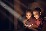 Buddhist novice monks reading in monastery