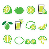lime - food icons set