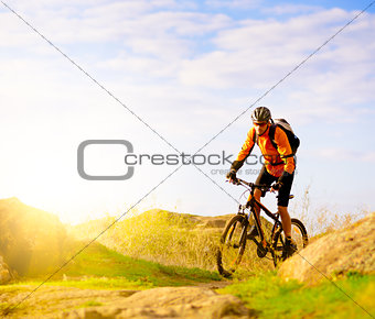Cyclist Riding the Bike on Morning Mountain Trail