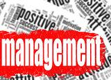Word cloud management business sucess concept