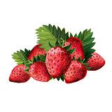 Red Strawberries With Leaves