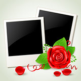 Photo and red rose