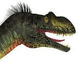 Megalosaurus Dinosaur Head