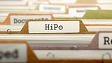 HiPo Concept on File Label.