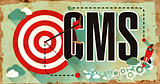 CMS on Poster in Grunge Design.