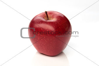 Beautiful red apple on white