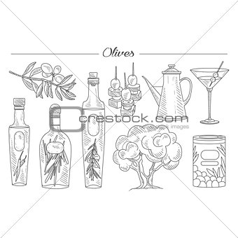 Olive Oil and Branch Handdrawn Vector Set
