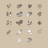 Spices Set, Vector Illustration