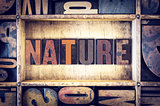 Nature Concept Letterpress Type