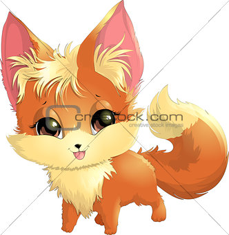 beautiful fox on a white background