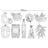 Olive Oil Handdrawn Vector Set