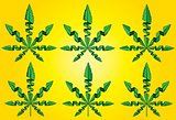cannabis marijuana leaf symbol vector illustration